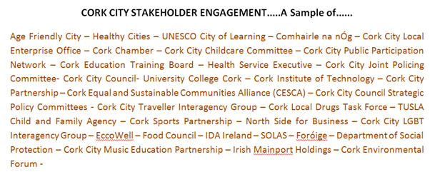 A sample of stakeholders engaged in the LECP consultation process.